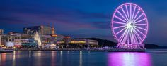 10 Can't-Miss Things to Do in the National Harbor