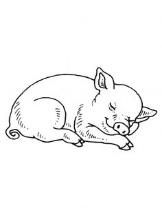 Sleeping Baby Pig coloring page from Pig category. Select from 31983 printable crafts of cartoons, nature, animals, Bible and many more. Colouring Pics, Animal Coloring Pages, Embroidery Patterns, Hand Embroidery, Sleeping Drawing, Cow Drawing, Baby Tattoos, Pig Tattoos, Graphic Illustration