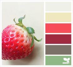 New bathroom paint colors red design seeds Ideas Red Colour Palette, Color Palate, Colour Schemes, Color Combos, Color Patterns, Color Red, Design Seeds, Palette Design, Strawberry Color