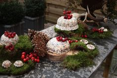 Christmasfood for the birds