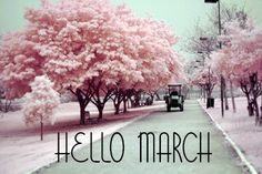 I luuv march its the bestest cause.... It's mine and my fave cousins hunters bday month  Mine-march t0th his weeell.. Tommmorow!:) March 5th!:)