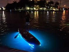 @Brittany Brubaker Night stand up paddle boarding with lights. What do yyou think about this?