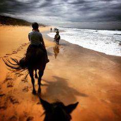 #Repost @courtneyconnole  Beautiful morning for horseback riding! #warrnambool #greatoceanroadtrip #forgothowawesomeitis #warrnamboolbeach #love3280 by destinationwarrnambool