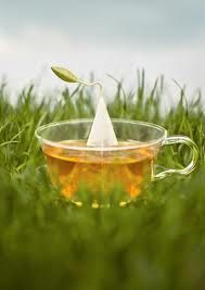 Tea Forte.  Hot + delicious.