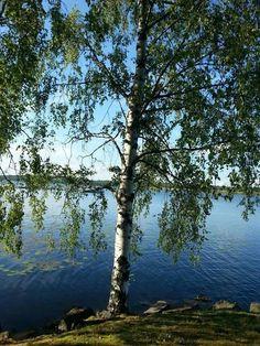 Calm lake landscape in Finland!