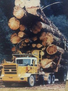 The old days of logging in Canada. Yes, this picture is real.