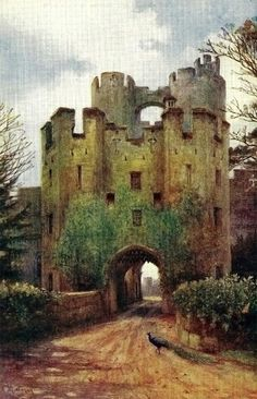 Warwick Castle The Salmons are from Warwick I did brass rubbings on headstones