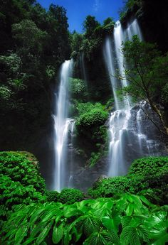 Sekumpul Waterfall in Northern Bali. Just one of hundreds of beautiful things about Bali. Bali Waterfalls, Beautiful Waterfalls, Beautiful Landscapes, Places To Travel, Places To See, Places Around The World, Around The Worlds, Beautiful World, Beautiful Places