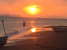 Costa de Pájaros