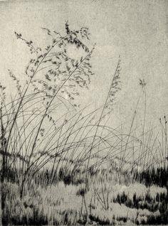 by Lyman Byxbe, etching Landscape Drawings, Landscape Art, Art Drawings, Gravure Illustration, Illustration Art, Encaustic Painting, Painting & Drawing, Painting Digital, Linocut Prints