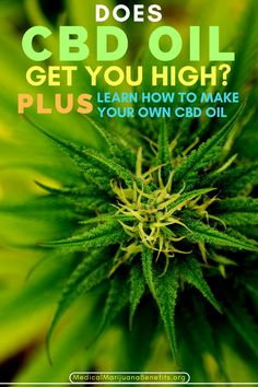 If you have decided to try CBD oil for a whole host of conditions, you are probably wondering does CBD oil get you high?  Read on to find out the answer to this question!