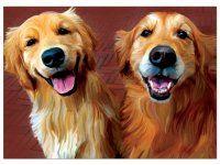 Ginger & Nutmeg ♦