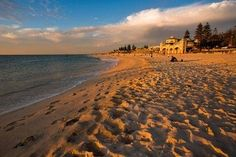In Lonely Planet named Cottesloe Beach the world's best beach for families. Book Unique Hotels up to off clicking on photo. Australia Beach, Western Australia, Cottesloe Beach, Gumtree South Africa, Famous Beaches, Unique Hotels, Sunny Beach, Scenic Photography, Amazing Destinations