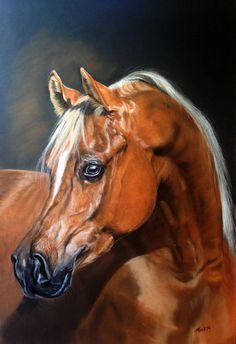 Arab stallion by Mariya-art