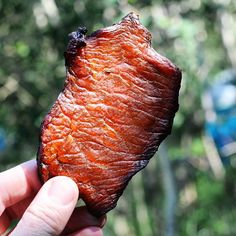What's better than sippin sweet tea on the porch in summer? Camping in the mountains with a stash of sweet tea pork jerky. Recipe in profile. . . #girlscangrill #smoked #pork #jerky #campingfood (no link)