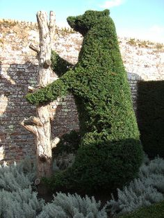 Bear topiary at Penshurst Place - photo by Wendy House (:: Wendy ::), via Flickr;  Kent, England