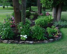 landscapung ideas for area around trees - Google Search