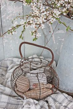 Vibeke Design   Would love to find a wire basket like this!