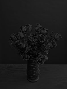 Removing color from flowers - arguably their defining and most attractive characteristic - you can make a a rich textural portrait. Try this with flowers, fruit, sand, and other things generally defined by shine or colour? // Daniel Seung Lee