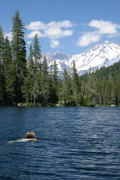 Castle Lake (California) - swimmer with Mt. Shasta in the background