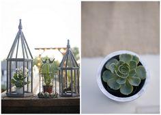 wedding inspiration, reception decor, succulents, birdcages, burlap