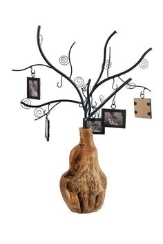 Tree like Metal Photo Frame with Sturdy Base Black and Brown by HomeRoots