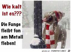 lustiges Bild 'Es ist ziemlich kalt.jpg'- Eine von 24354 Dateien in der Kategorie 'witzige Bilder' auf FUNPOT.