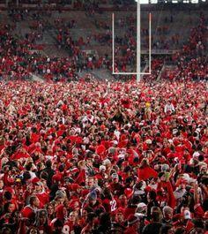 Celebrate Ohio State football