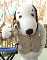 Beagle Huggin' a Beagle