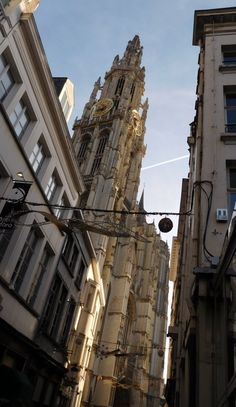 The cathedral of Antwerp