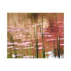 Water Through Reeds Canvas Print