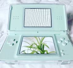 Minty DS
