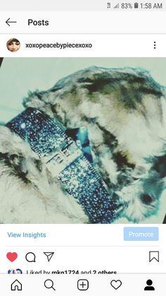 Designer Dog Collars, Dog Accessories, Dog Design, Jewelery, Bling, Dogs, Jewlery, Jewels, Jewel