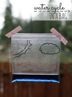 Super fun science for kids. Make the water cycle in a bag! Just need a ziploc, water, food coloring and a Sharpie. Easy science experiment for kids!