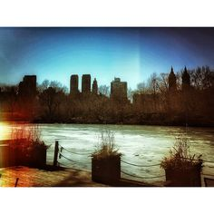 """""""No boats  on the pond - no spring in sight - no news for NYers - """" reagram from Johannes Huebl"""