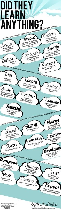 Did They Learn Anything Infographic: 27 ways to judge whether or not your students took anythingaway from the lesson