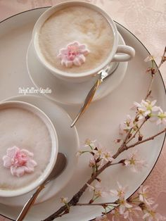 Sakura and coffee