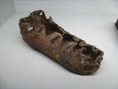 Shoe, Dürrnberg salt mine, Hallstatt culture, VII-V BC