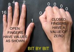 How to count binary with your hands. : )