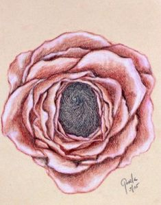 The Crowning Rose - visualise thinning & opening