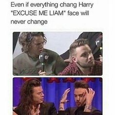 One Direction ( One Direction Quotes, One Direction Pictures, I Love One Direction, Harry Styles Memes, Harry Styles Pictures, Liam James, Normal Guys, Thing 1, 1d And 5sos