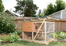 Our chickens will live in here. We'll have three hens. Mine will be named Henny Penny.