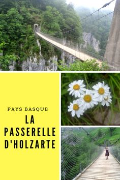 Road Trip Pays Basque, Voyage Europe, Basque Country, Railroad Tracks, Adventure Time, Camping, City, World, Plants