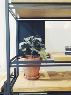 22 Best My work images | Design, Frandsen lighting, Light table