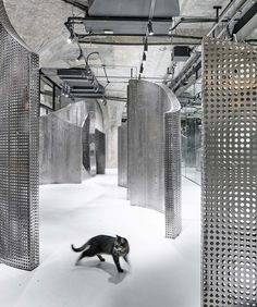 E Space Creative Lab has created The Animal Backbone, a sanctuary/pet store set within the former animal slaughterhouse iside 1933 Shanghai building. Pop Design, Design Lab, Sketch Design, Design Concepts, Wall Design, Graphic Design, Instalation Art, Creative Labs, Exhibition Space