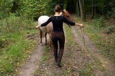 Wenden des Pferdes - Führtraining
