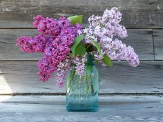 What wouldn't I give for fresh lilacs every day? I miss the lilac bush I used to have in my yard. Lilac Flowers, Purple Lilac, Fresh Flowers, Beautiful Flowers, Lilac Tree, Vases, Mason Jar Centerpieces, Shower Centerpieces, Centerpiece Ideas