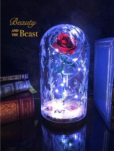 Take home the magic from the movie The Beauty and the Beast with this enchanted rose inspired from the newest movie. This rose is entirely hand made out of metal, hand painted, and wrapped with LED li Enchanted Rose, Disney Enchanted, 30th Birthday Ideas For Women, Beauty And Beast Wedding, Beauty And The Beast Rose Diy, Rose Dome, Quince Decorations, Deco Floral, Birthday Woman