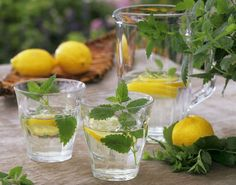 Perfect Drink-Your Best Solution for Quick Weight Loss