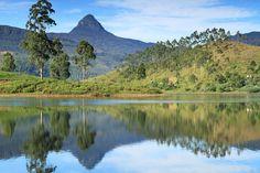 Sri Lanka's tallest mountain, Adam's Peak, in the distance.